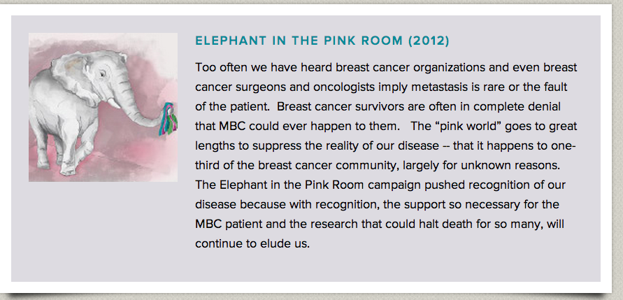 elephant in the pink room