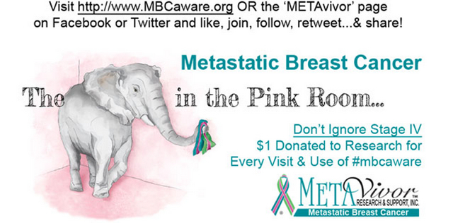 METAvivor, Kohls & The Elephant In the Pink Room