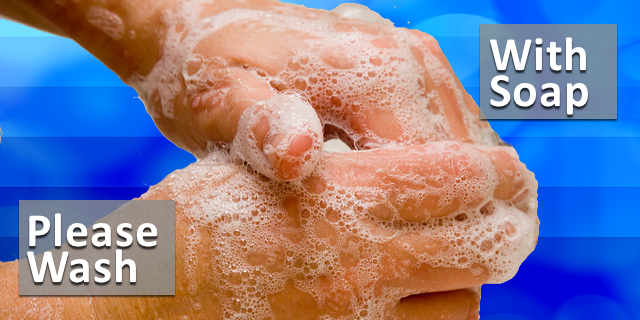 Why Wash Your Hands?  Hand washing 101
