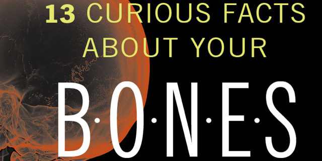 Over 13 Facts About Bones-Medivizor