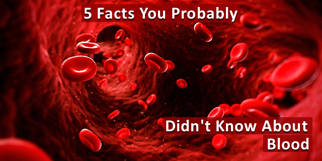 5 Facts You Probably Didn't Know About Your Blood