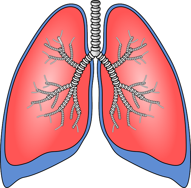 How to Protect Your Lungs When You Have Rheumatoid Arthritis