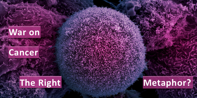 War on Cancer: The Right Metaphor?