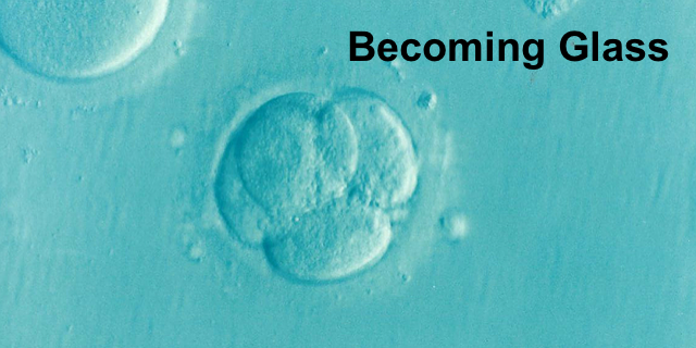 Turning to Glass: Fertility Preservation