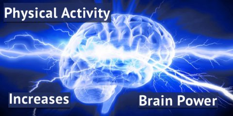 Even A Small Amount Of Physical Activity Helps Your Brain!
