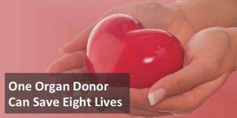 Living On Through Organ Donation