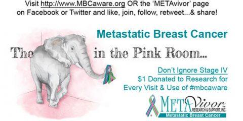 METAvivor, Kohls & The Elephant In the Pink Room