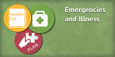 Emergencies and Illness