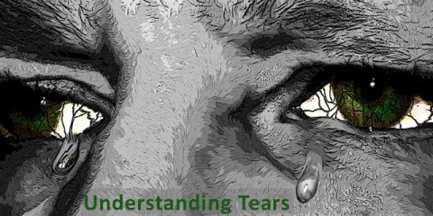 3 Types of Tears?  Get To Know Your Tears:  Infographic