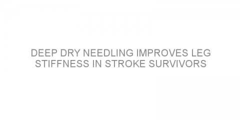 Deep dry needling improves leg stiffness in stroke survivors
