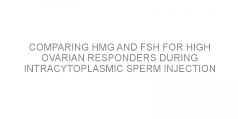 Comparing hMG and FSH for high ovarian responders during intracytoplasmic sperm injection