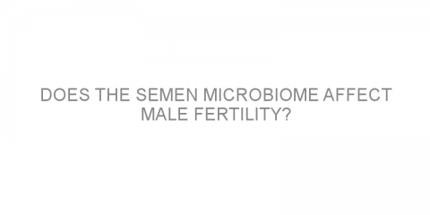 Does the semen microbiome affect male fertility?