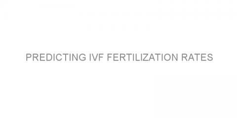 Predicting IVF fertilization rates