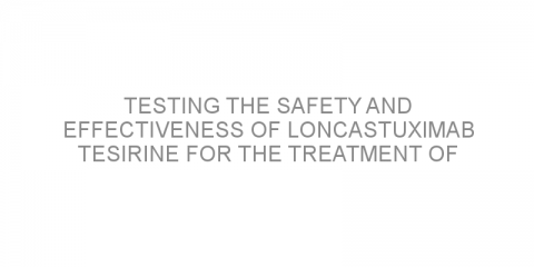 Testing the safety and effectiveness of loncastuximab tesirine for the treatment of relapsed/refractory B-cell non-hodgkin lymphoma