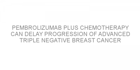 Pembrolizumab plus chemotherapy can delay progression of advanced triple negative breast cancer