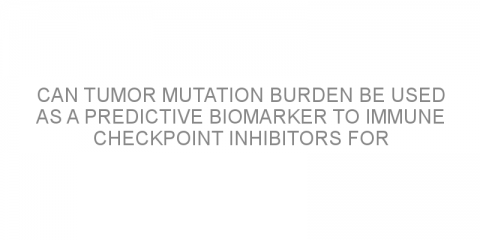 Can tumor mutation burden be used as a predictive biomarker to immune checkpoint inhibitors for non-small cell lung cancer?